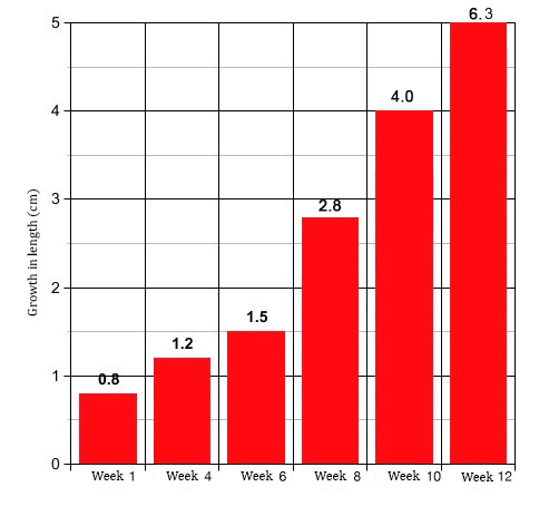 Dick growth charts — photo 12
